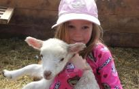 girl holding a small lamb